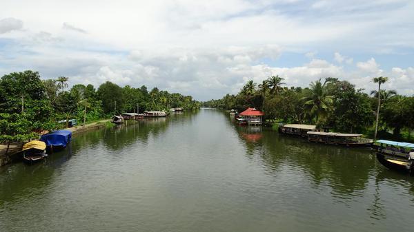 Lush pristine backwaters- Kerala!