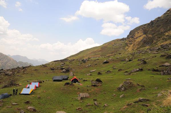 Bakhadi Top