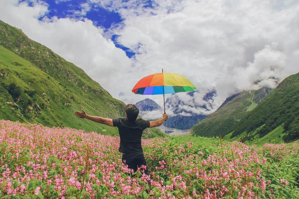 Valley of flowers and Hemkund sahib