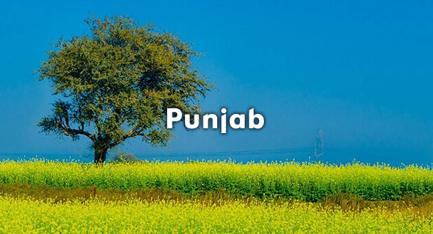 Energetic Punjab Quiz